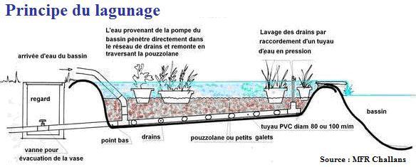 filtre piscine uv